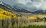 Flagstaff Fall Color 2