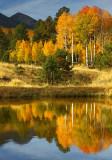 AZ - Flagstaff Fall Color 7