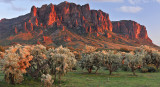 Lost Dutchman Superstitions 1