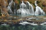 AZ - Navajo Falls