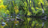 AZ - Oak Creek Fall Color Reflection 2