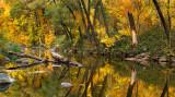 AZ - Oak Creek Fall Color Reflection 3