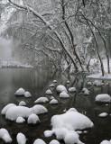 Oak Creek Snowy 2