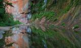 Oak Creek West Fork Reflection 1