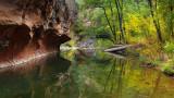 Oak Creek West Fork Reflection 2