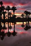 AZ - Papago Park Sunset Reflection