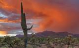 AZ - Peralta Trail Superstitions Sunset