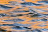 AZ - Salt River 3