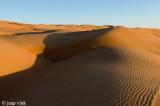 Wahiba Sands at sun set