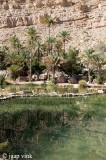Mukhal pools