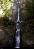 Falls along the Columbia River, Oregon