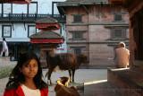 Nepal 3809.jpg
