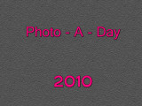 Photo-A-Day 2010