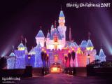 Hong Kong Disneyland Dec 9, 2007