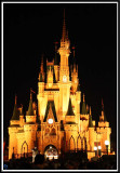 Disney Magic Kingdom, 2010 (continued)