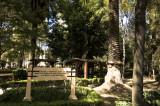 Condesa-5.jpg