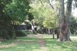 Kichwa Tembo grounds