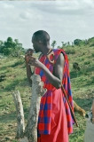Andrew (son of Maasai chief) cleans his teeth with a stick