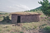 The Maasai start their houses with tree branches