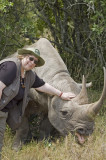Lynda and Morani, the local tame black rhino