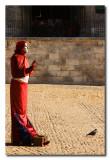 Estatua humana solitaria y la paloma  -  The pigeon and the solitary human statue