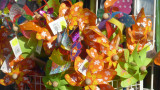 bonbons acidules