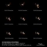 ISS OVER MANILA (PHILIPPINES) April 8, 2009, magnitude = circa –2.0, distance = circa 370+ km 40D + 500 f4 L IS + Canon 2x TC + Sigma 2x TC, 2000 mm f/22, ISO 1600, 1/320 sec, Manfrotto 475B/3421 support, processed 100% crops