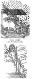 200px-Tiangong_Kaiwu_Chain_Pumps1.jpg
