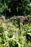 Bath Botanical Gardens