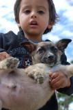 hijo con perro