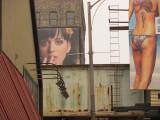 Katy Wallscape Detail