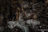 025-Hail in Souda.JPG