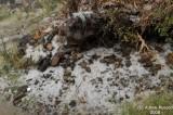 026-Hail in Souda.JPG