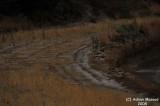 028-Rain and Hail in Souda.JPG