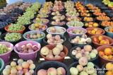 039-Fresh Fruits.jpg