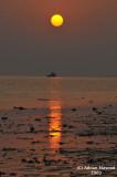 Sunset_&_skylines_013.jpg