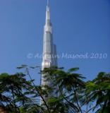 Dubai_021016.jpg.jpg