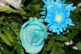 Flower_04110.JPG