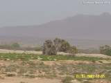 Between Abha and Qunfadah.JPG