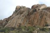 Wadi Al-Shafa 1.JPG