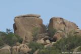 Wadi Al-Shafa 2.JPG