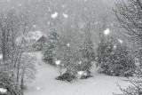 Four Inch Snowflakes, 12-18-09