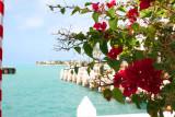 Key West Mallory Sq 6.jpg
