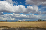 Landscapes of the Kgalagadi 2009