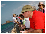 At Caesarea, Jay Contemplates the Mediterranean
