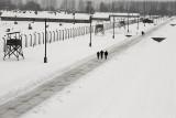 Birkenau - winter