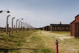 Birkenau - summer