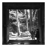 Jessica & Joseph, Kamakura
