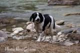 Mud_Puppies-1639.jpg