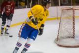 HockeyGame-8101.jpg